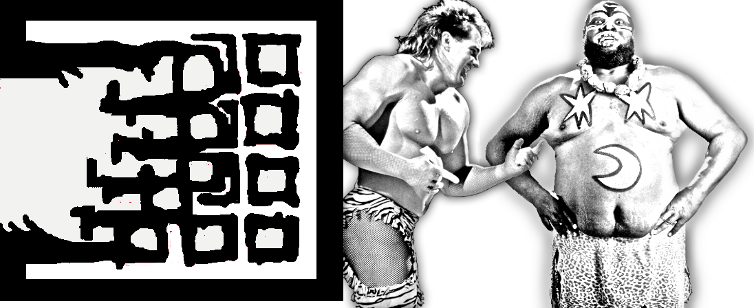 WOHW Publishers Wrestling Books, Kamala, Brutus Beefcake, Vader, Danny Davis, Sabu